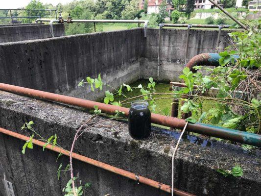 Campioni per verifica ambientale presso impianto depuratore - Besana Brianza - Monza Brianza